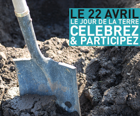 Plantation - Participez