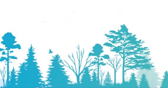 jour_de_la_terre_quebec_qc_votre_arbre_notre_terre_centre_eaton