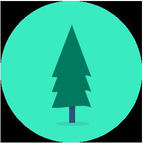 Faites_un_don_375000_arbres_1arbre