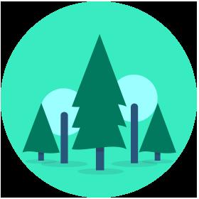Faites_un_don_375000_arbres_5arbre