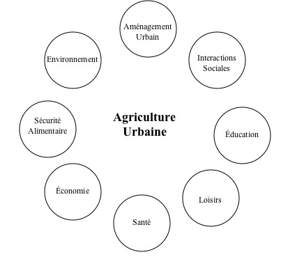 jour_de_la_terre_quebec_qc_blogue_tous_les_jours_porteur_espoir_laurence_williams_agriculture_7