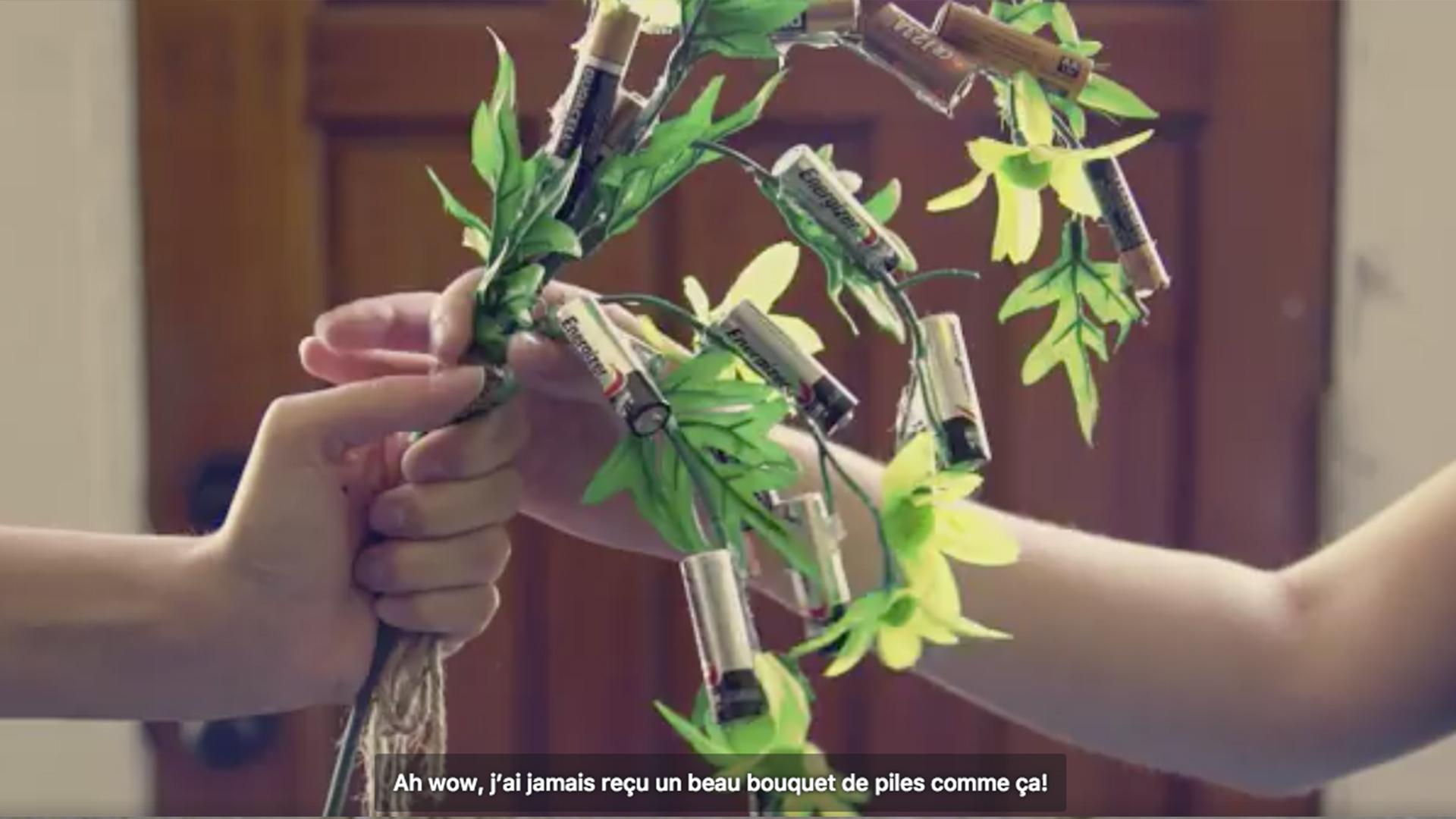 jour_de_la_terre_quebec_qc_blogue_article_trucs_astuces_ariane_arbour_green_tes_piles_appel_a_recycler_3
